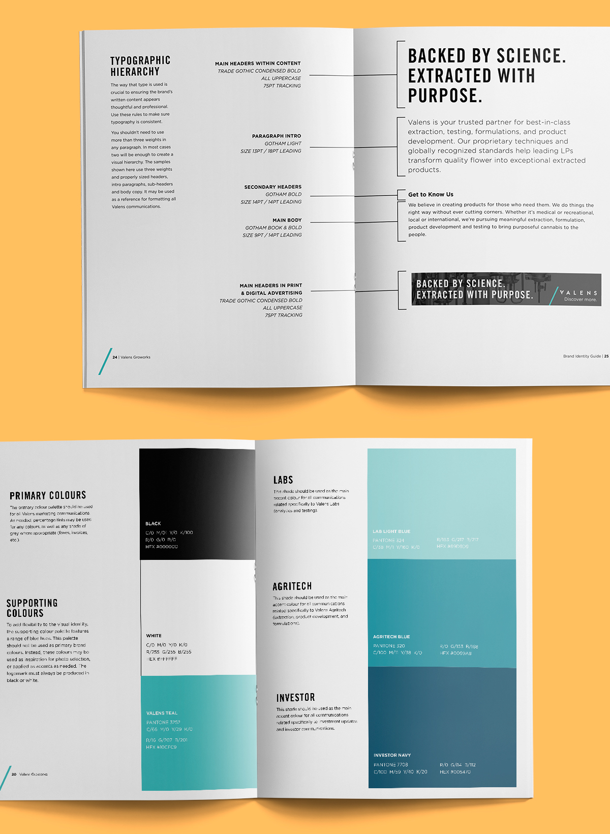 Valens Brand Identity Guide with typography and colour palette on light orange