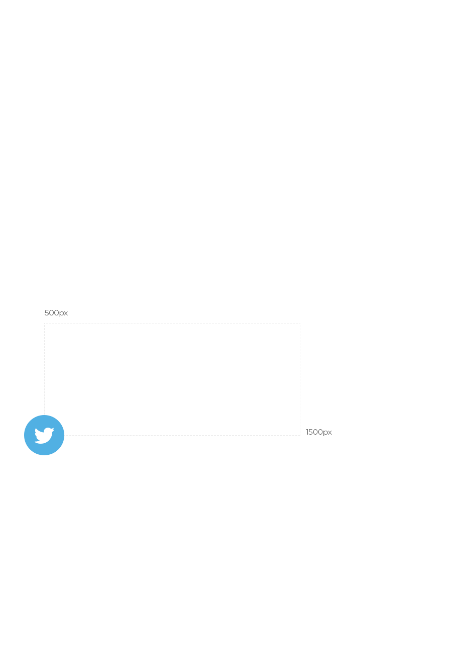 Twitter Icon with Pixel Size Labels
