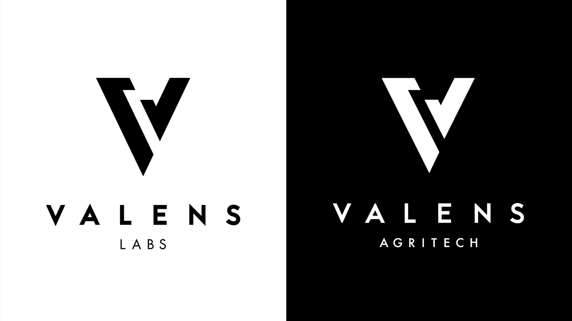 The Valens Company Logos