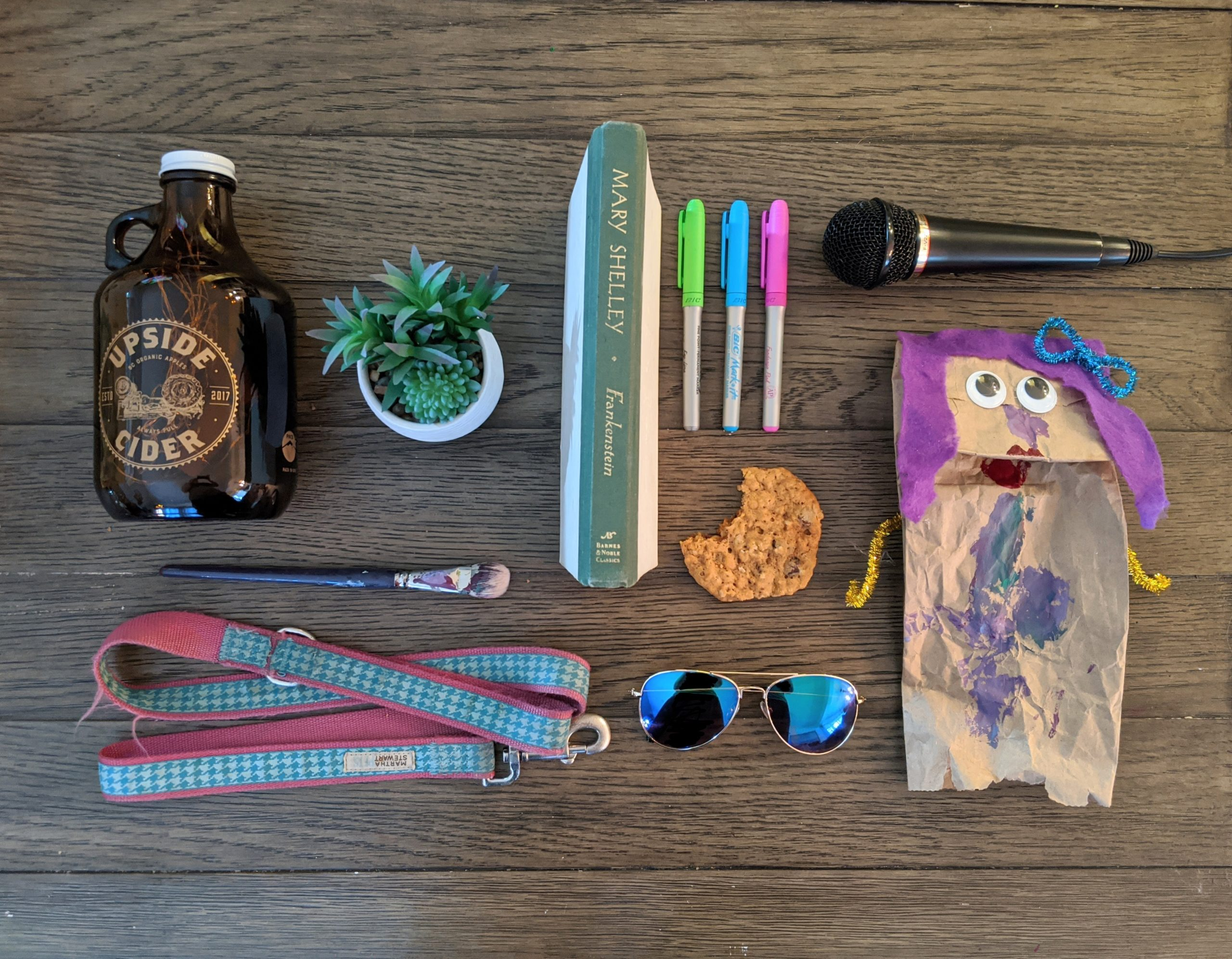 Different objects, such as a paintbrush, novel, microphone, dog leash, plant, sunglasses, and cookie, that reflect who Christine Weber is and her interests