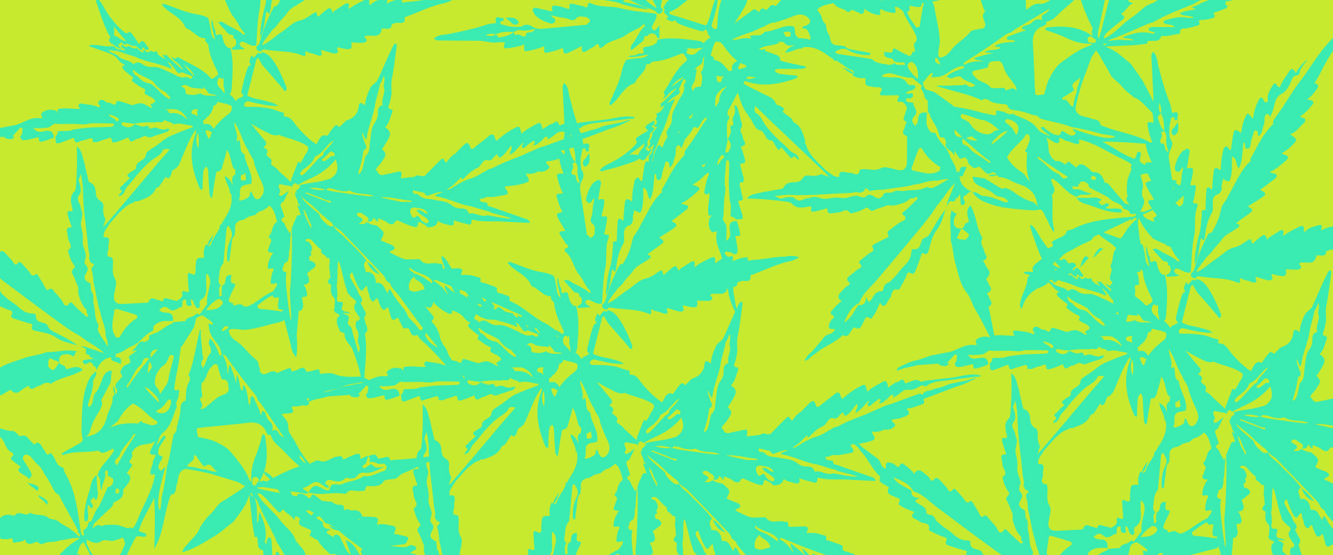 Ten17 Digital Cannabis Co Branded Bright Green Pattern of Cannabis Leaves