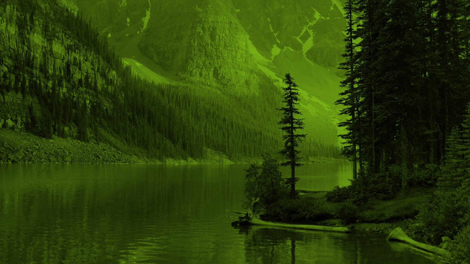 Scenic view of a lake surrounded by dense forest and soaring mountains.